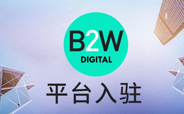 巴西b2w平台, 巴西平台中国招商,巴西电商平台好做吗
